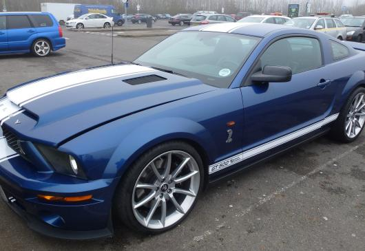 FORD SHELBY GT500 2007 Snake replica